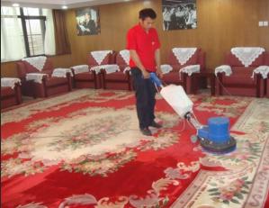 地毯山猫足球直播免费